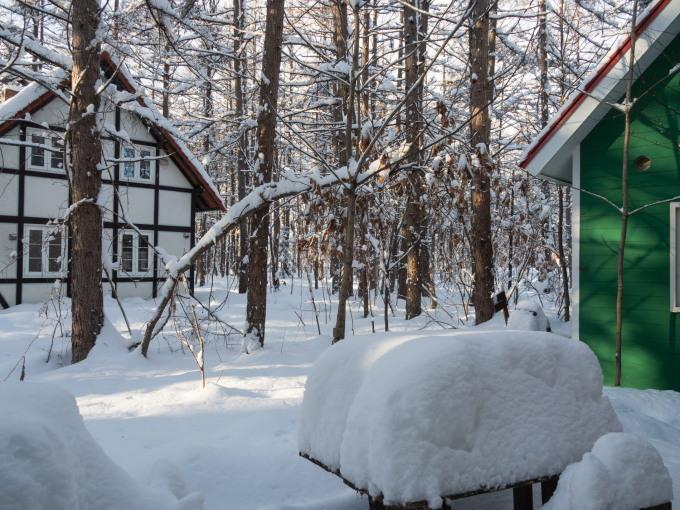 昨日もまた雪・・ついに例年並みの積雪量になりました。_f0276498_23223357.jpg