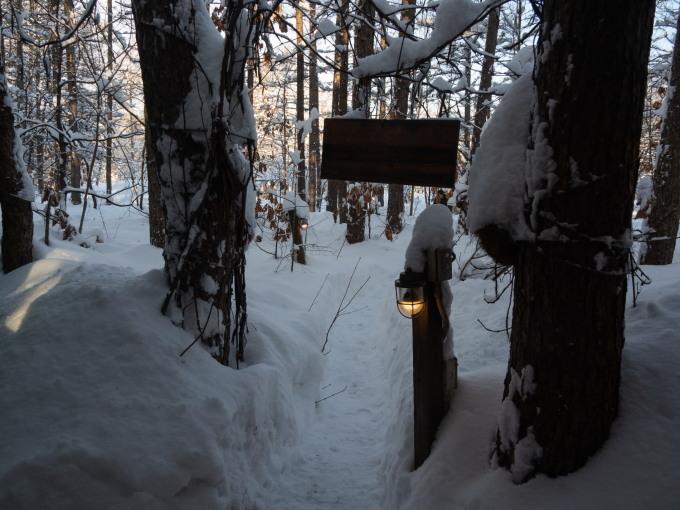 昨日もまた雪・・ついに例年並みの積雪量になりました。_f0276498_23224309.jpg