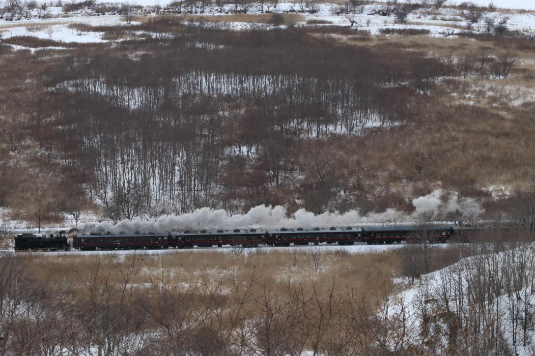 荒涼とした湿原と白煙の汽車を見下ろす - 2020年・釧網線 -_b0190710_22103822.jpg