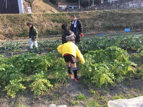 ゆるUNO 2/2(日) at UNOフットボールファーム_a0059812_18151008.jpg