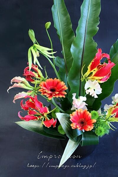 定期装花から タニワタリ_a0085317_15140088.jpg