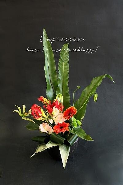 定期装花から タニワタリ_a0085317_15141869.jpg