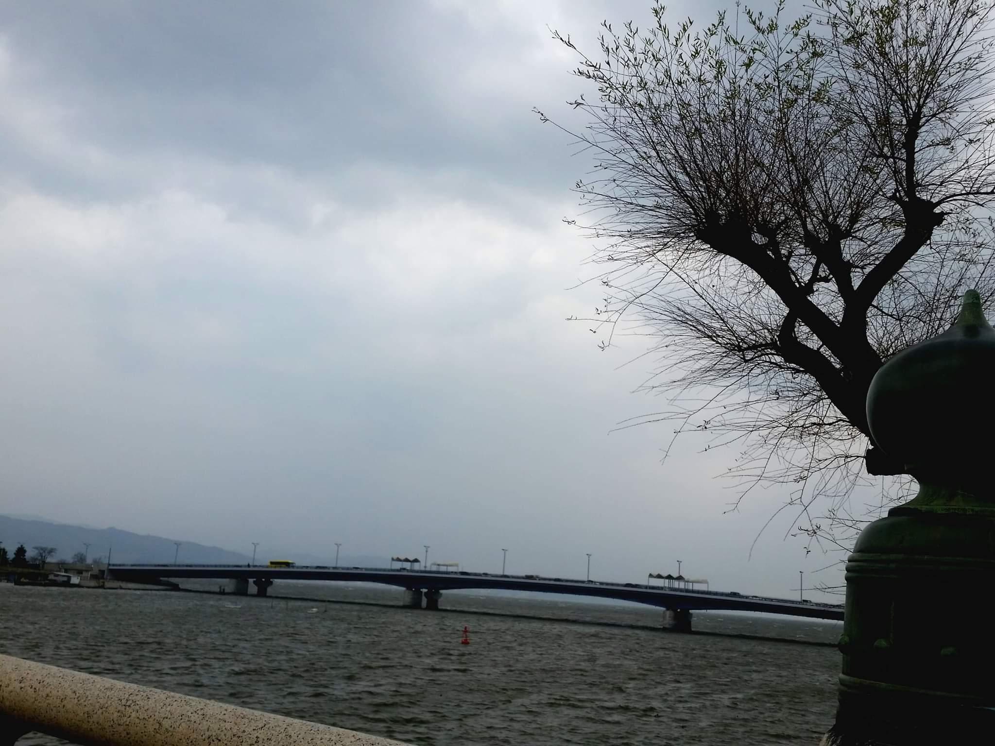 山陰放送ラジオ あさスタ ひろがる料理_c0124528_16371560.jpg