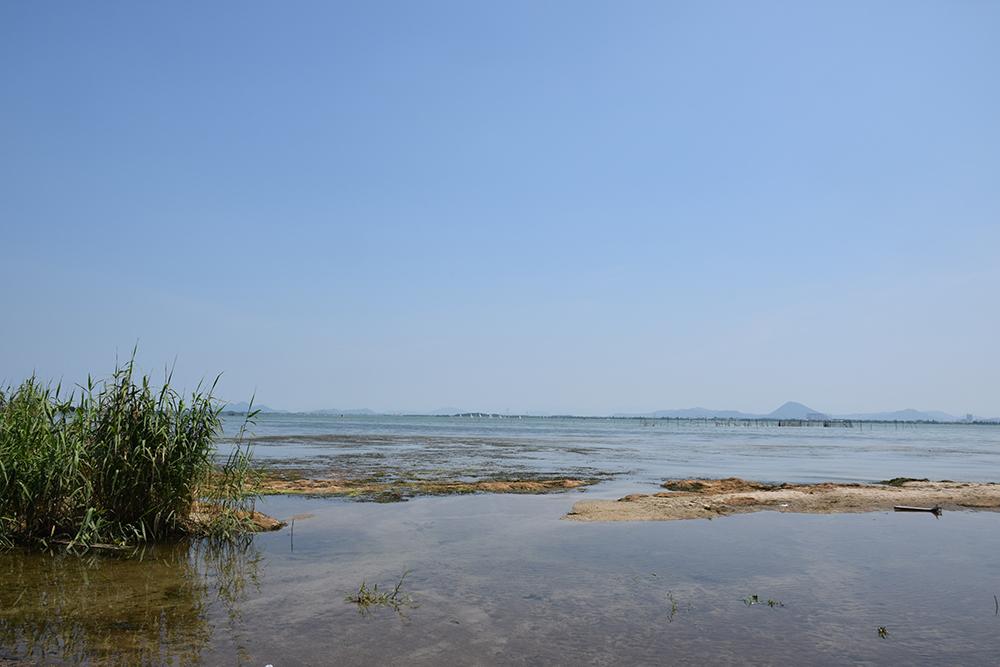 近江坂本城跡を歩く。 その1 <坂本城址公園>_e0158128_23232814.jpg
