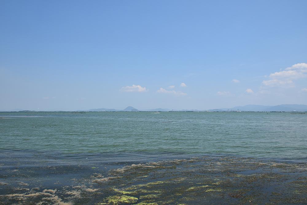 近江坂本城跡を歩く。 その1 <坂本城址公園>_e0158128_23253888.jpg