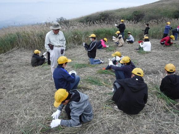 阿蘇小6年生が「草原のススキが入った卒業証書用の紙を作りました」_a0114743_14164965.jpg