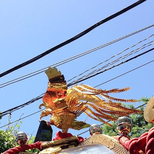 天王祭の神輿が向こうから来てくれた_c0060143_14385407.jpg