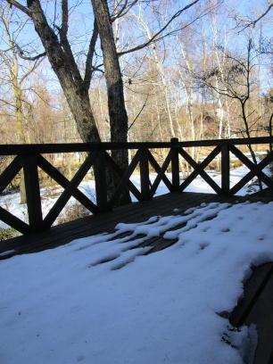 雪の蓼科へ_e0136049_717378.jpg