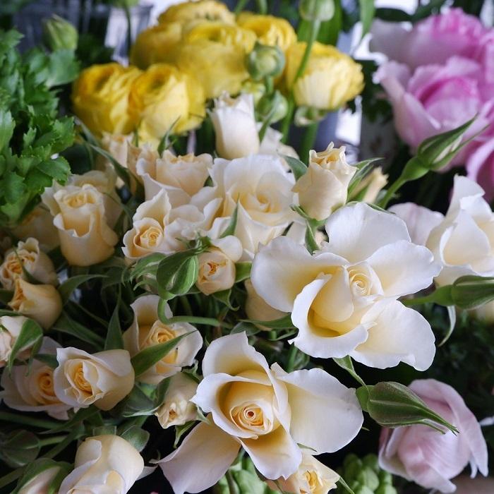 オークリーフ(春の花)_f0049672_23050808.jpg