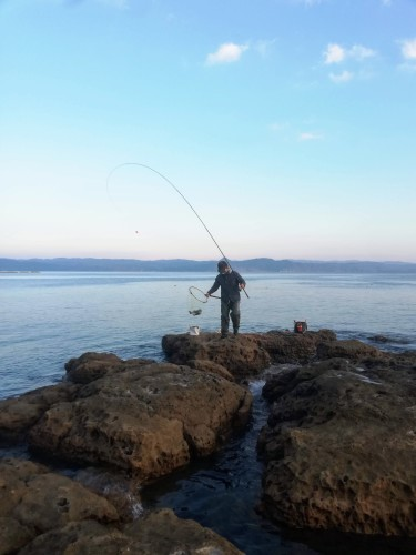 長崎の海で釣り_d0195183_08401881.jpg