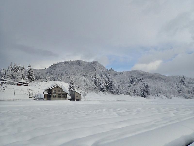 ようやく冬らしい朝でした!_c0336902_21083430.jpg