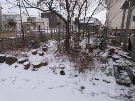 真冬日・消雪パイプ_a0203003_17511597.jpg