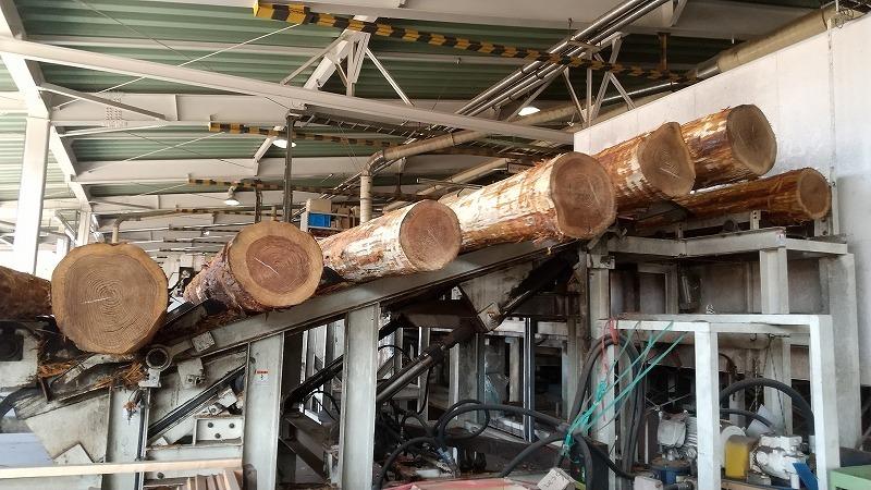 静岡県産木材を積極的に利活用を!_d0050503_09084676.jpg