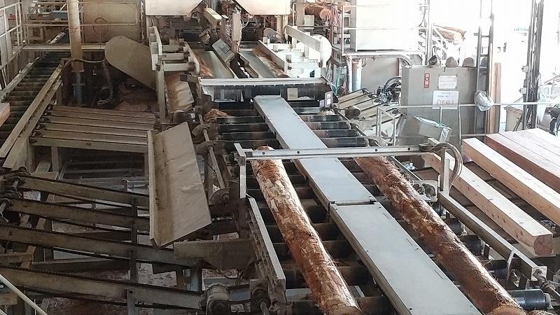 静岡県産木材を積極的に利活用を!_d0050503_09085786.jpg