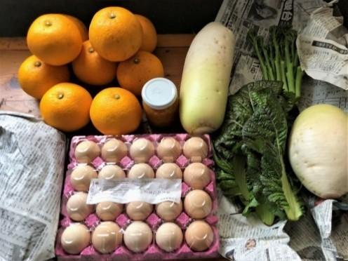 今日も野菜をいただく_a0346704_17364937.jpg