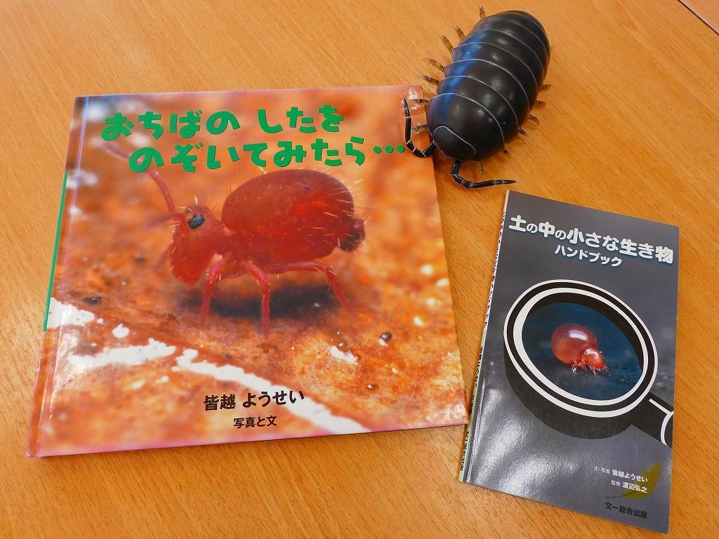 自然講座「ダンゴムシの不思議」のお知らせ_b0049307_10031769.jpg