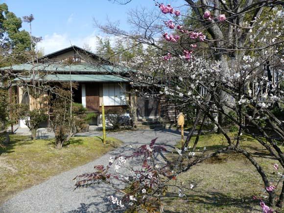 松花堂庭園_e0048413_15155630.jpg
