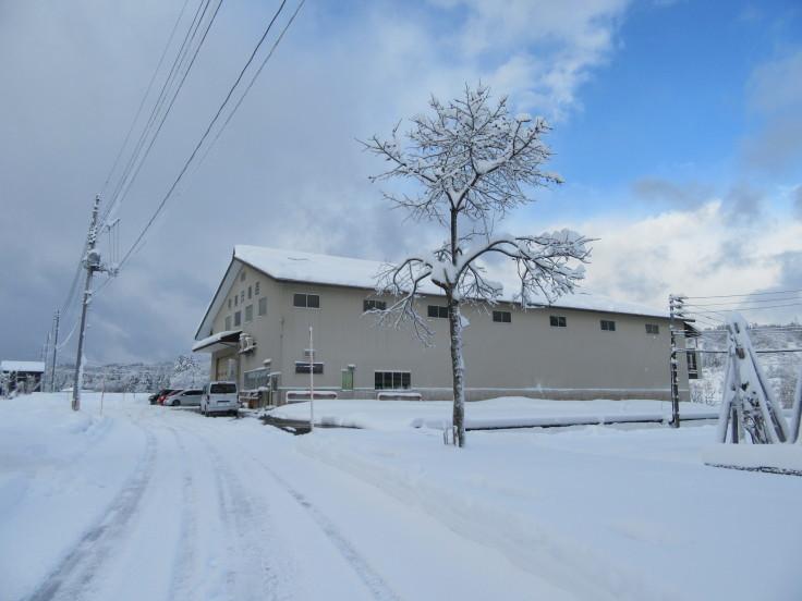 雪国になりました。_f0067514_21123310.jpg