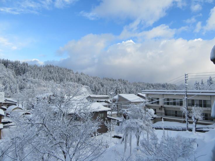 雪国になりました。_f0067514_21130235.jpg