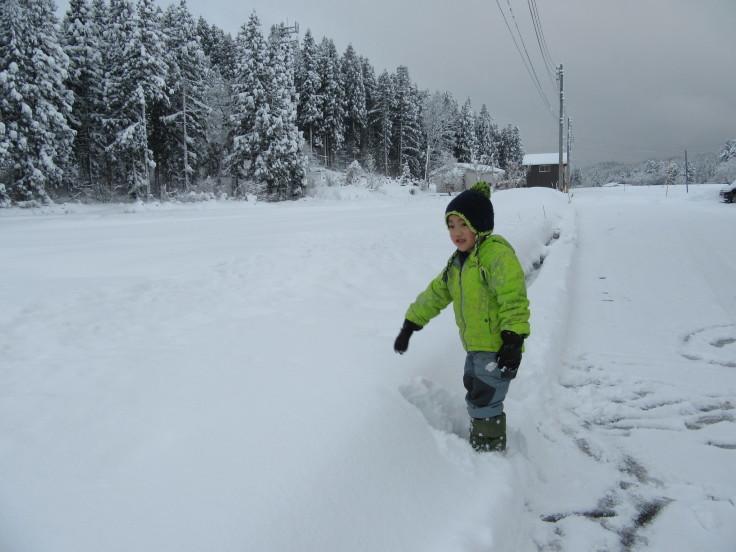 雪国になりました。_f0067514_21133361.jpg