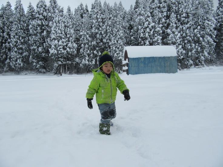 雪国になりました。_f0067514_21145505.jpg