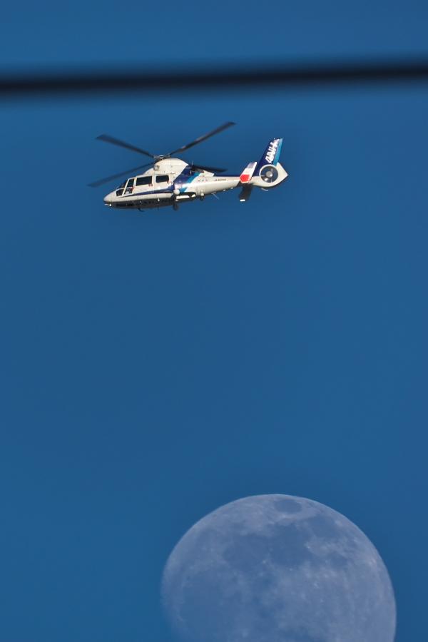 今日の東の空~下総帰りのU-125から「月とヒコーキ」まで~_d0137627_23124592.jpg