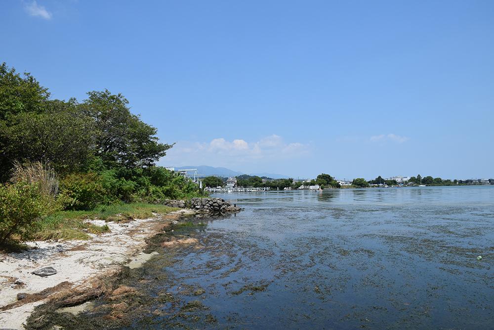近江坂本城跡を歩く。 その2 <本丸跡>_e0158128_20461679.jpg