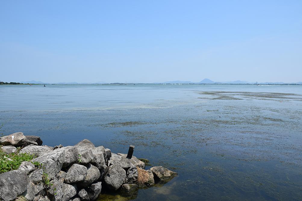 近江坂本城跡を歩く。 その2 <本丸跡>_e0158128_20520379.jpg