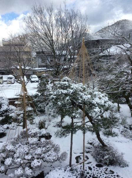 今季初めての積雪_f0289632_11125736.jpg