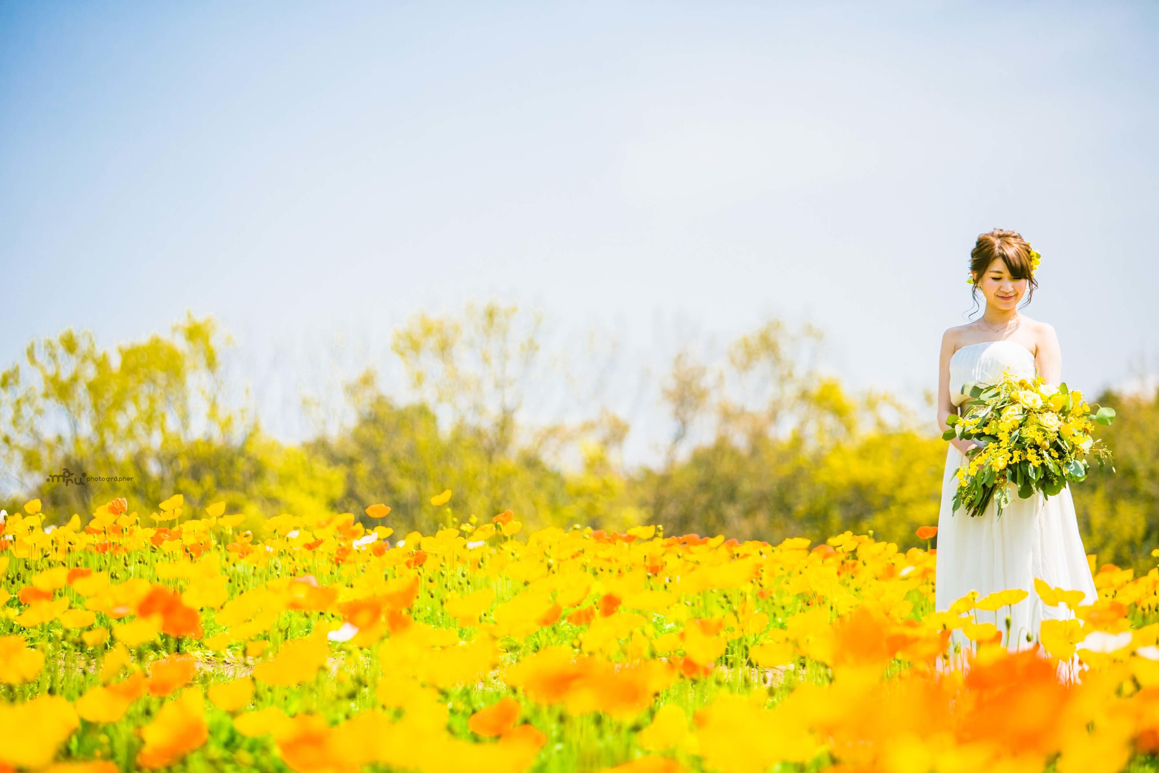春の前撮り 受付中_c0344245_00004609.jpg