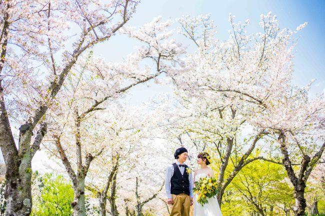 春の前撮り 受付中_c0344245_00010331.jpg