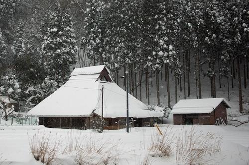 針畑雪、来た!・・・除雪ドーザ、ママダンプも出動!_d0005250_1641263.jpg