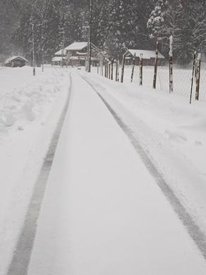 針畑雪、来た!・・・除雪ドーザ、ママダンプも出動!_d0005250_16464623.jpg