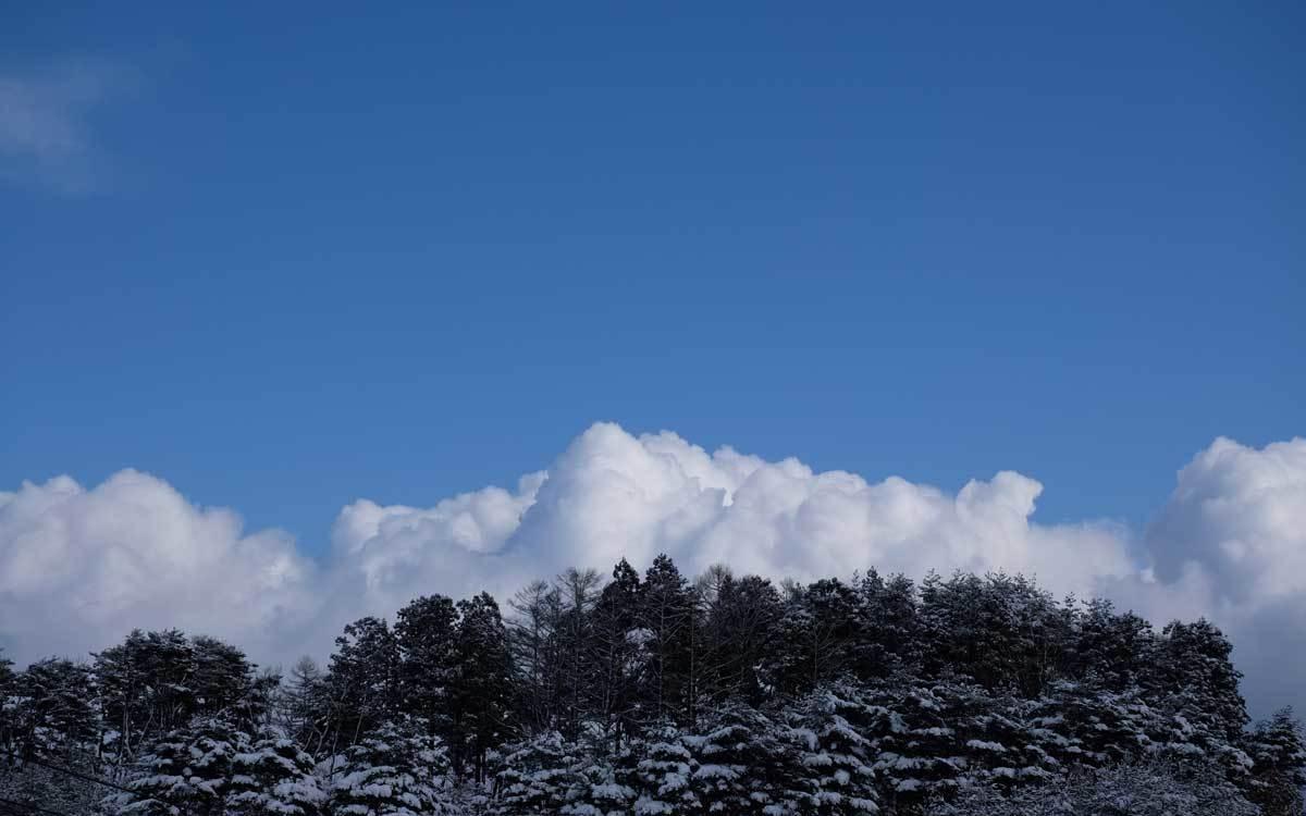 天気予報が外れて嬉しい時もある_e0220159_11153180.jpg