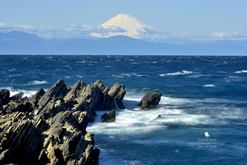 富士山特集_c0319774_00133544.jpg
