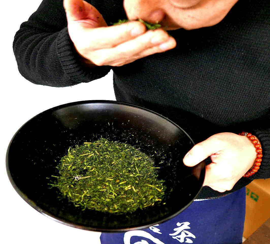 茶園 苦労に苦労を重ねたが行政はそれを削る  The tea garden was created in a series of struggles._a0391480_20540776.jpg