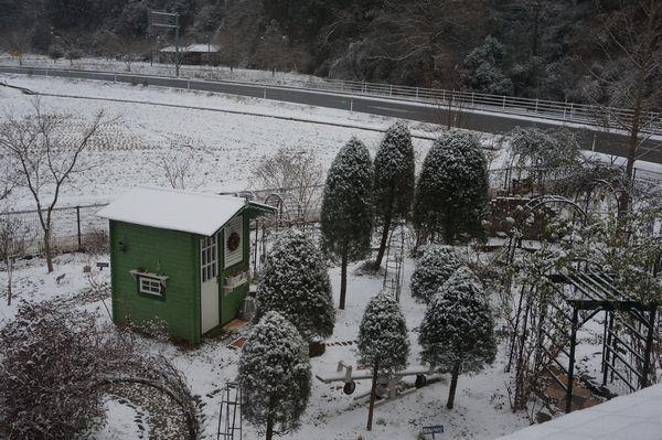 おお、雪が、、、_e0365880_08361521.jpg