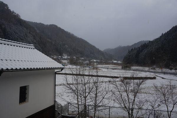 おお、雪が、、、_e0365880_08362474.jpg