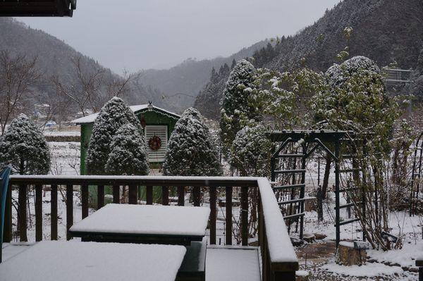 おお、雪が、、、_e0365880_08363150.jpg