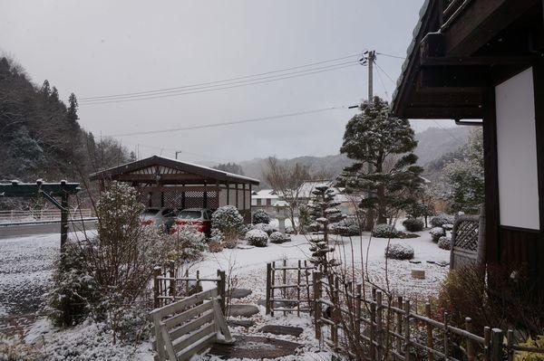 おお、雪が、、、_e0365880_08364026.jpg