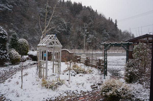 おお、雪が、、、_e0365880_08365146.jpg