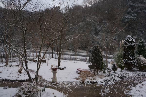 おお、雪が、、、_e0365880_08370404.jpg