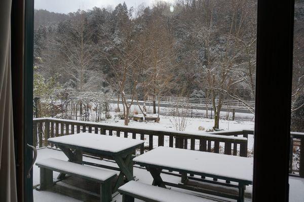 おお、雪が、、、_e0365880_08371613.jpg