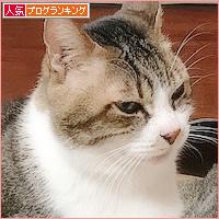 おばあちゃんずの和_a0389088_21151966.jpg