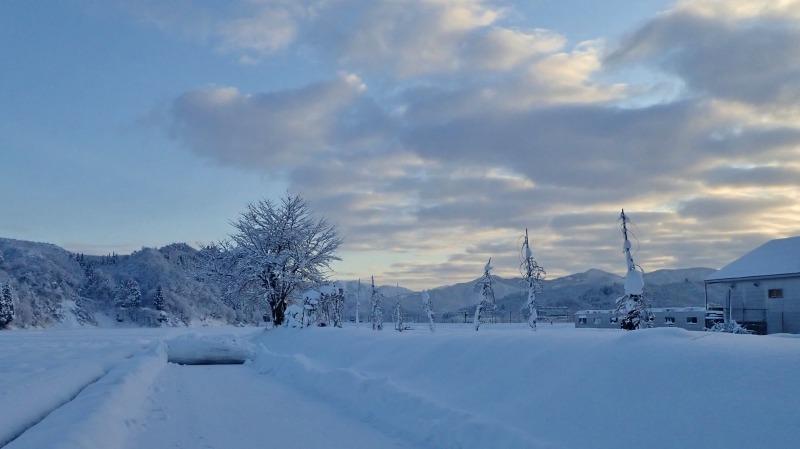 寒い朝、兼業農家の出勤前の風景です_c0336902_21371534.jpg