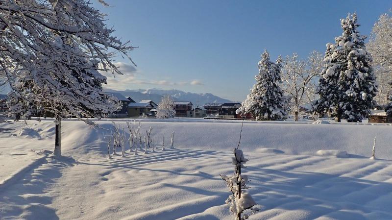 寒い朝、兼業農家の出勤前の風景です_c0336902_21372485.jpg