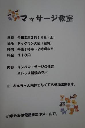 2月7日(金)ドッグラン大仙の様子☃_f0170713_15392555.jpg