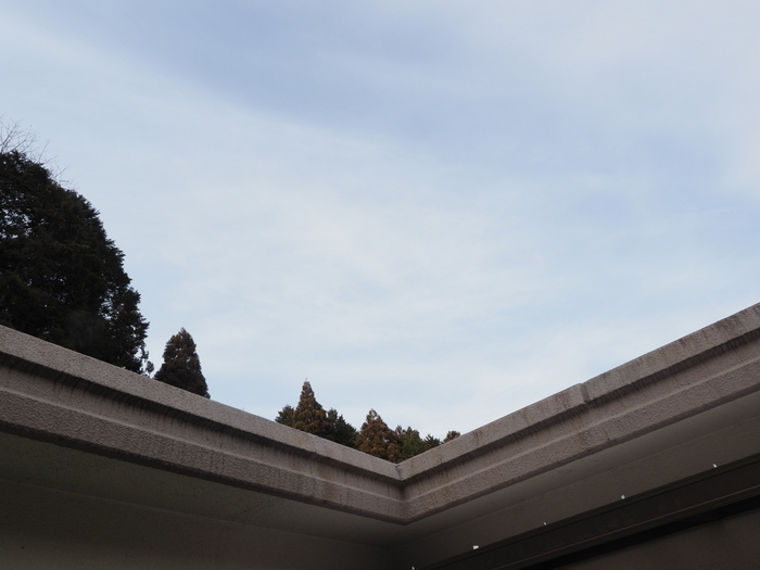 曇りのち、薄雲の晴れ_c0116915_22405565.jpg