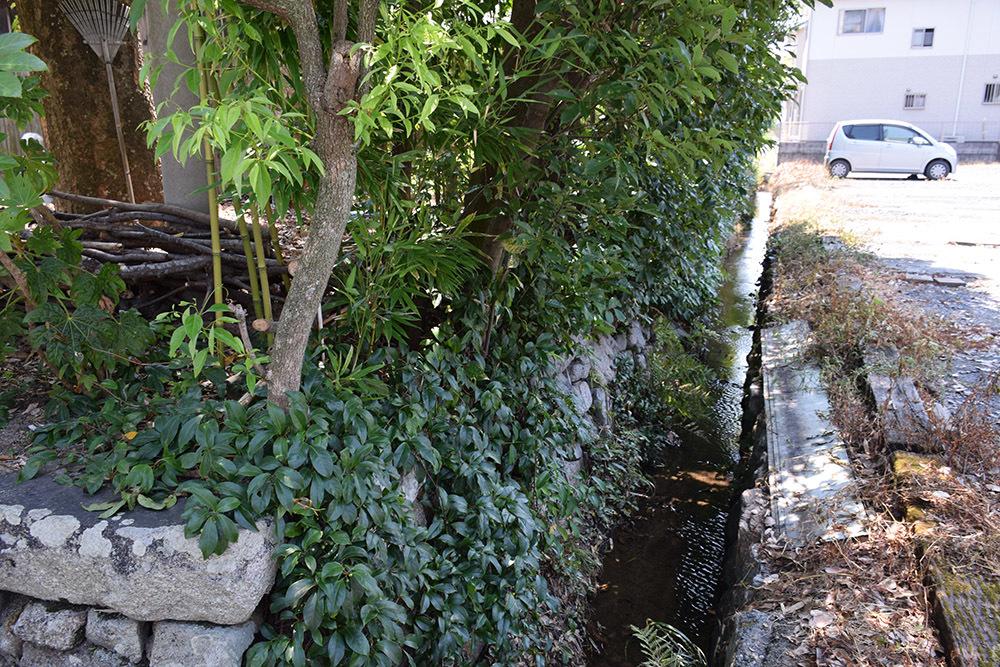 近江坂本城跡を歩く。 その3 <二ノ丸、三ノ丸>_e0158128_18521948.jpg