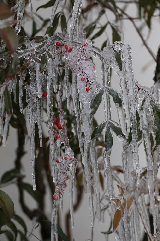 今シーズン最低気温_c0111229_18361321.jpg